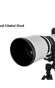 Gimbal Head for Telephoto Camera Lens