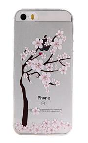 material de TPU floresce padrão caixa do telefone fino para iphone SE / 5s / 5