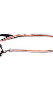 Perros Cuello / Correas Reflexivo / Ajustable/Retractable / Seguridad / Suave / Fluorescente / Carrera Sólido Verde / Naranja Nilón