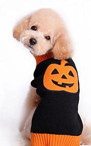 Koirat Neulepaidat Keltainen / Maalattu Koiran vaatteet Talvi Hedelmä Halloween /