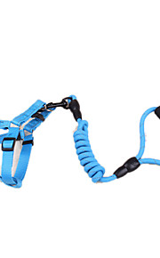 כלבים רתמות / רצועות מחזיר אור / נורות LED / חוזרמתכווננת פס כחול בד