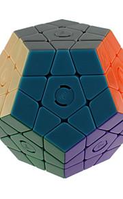 Legetøj Glat Speed Cube MegaMinx Originale Minsker stress Magiske terninger Regnbue Plastik