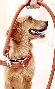 Kissat Koirat Kaulapannat Talutushihnat Säädettävä/Sisäänvedettävä Turvallisuus Koulutus Tukeva Maalattu Ruskea Genuine Leather