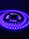 5M 24W 60x3528SMD 900-1200LM Blue Light LED Strip Light with 12V 2A Adapter