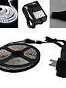 5M 300X3528 Smd White LED Strip Light and Connector og AC110-240V til Dc12V3A Transformer