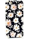 Little Chrysanthemum Pattern Hard Case for iPhone 4/4S