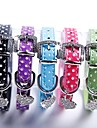 Cat / Dog Collar Adjustable/Retractable / Cosplay Black / Green / Blue / Pink / Purple PU Leather