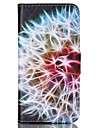 For iPhone 6 Case / iPhone 6 Plus Case Wallet / with Stand / Flip Case Full Body Case Dandelion Hard PU LeatheriPhone 6s Plus/6 Plus /