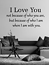 Words & Quotes Wall Stickers Plane Wall Stickers,vinyl 58*30cm