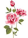ботанический / Романтика / Натюрморт / Мода / Цветы / Отдых Наклейки Простые наклейки,PVC 70*50*0.1