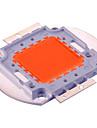 30W Guirlande Lampes Horticoles LED 30 LED Integree 1500 lm Violet Decorative DC30-36 V 1 piece