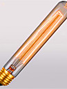 T225 ac110 / 220 e27 60w retro atmosphere whistle tube retro ampoules decoratives 1pcs