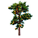 Model  Building Toy Doll Toy orange Tree